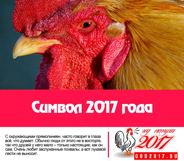 символ-года-2017-петух