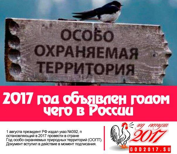 2017 год объявлен годом чего в России