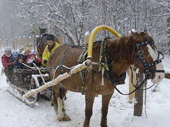 Какая будет зима 2016 - 2017 на Урале