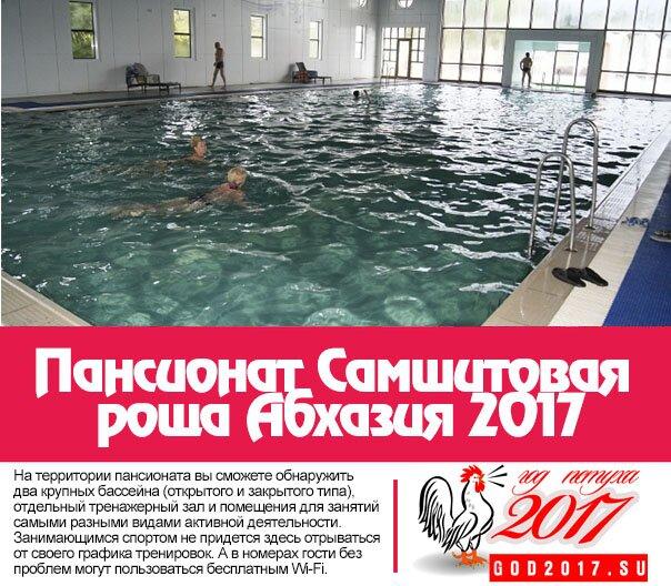 Пансионат Самшитовая роща Абхазия 2017