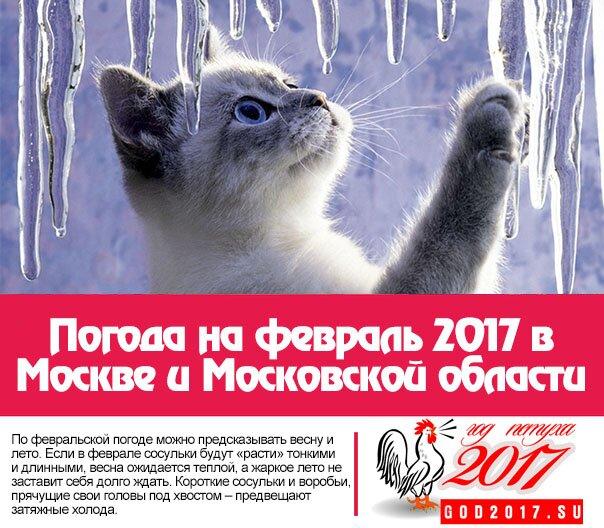 Погода на февраль 2017 в Москве и Московской области