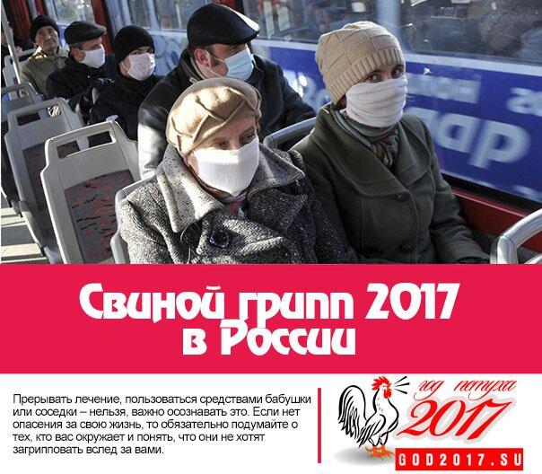 Свиной грипп 2017 в России