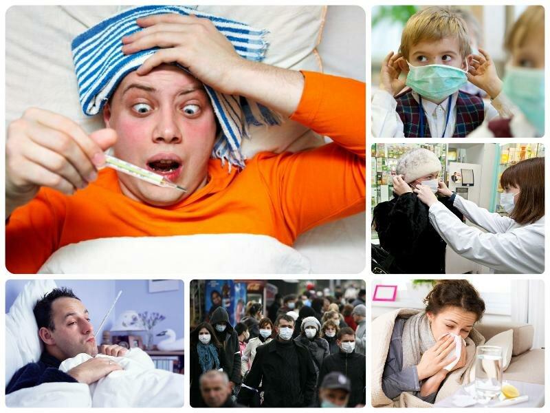 Какой грипп ожидается в 2016 - 2017 году в России