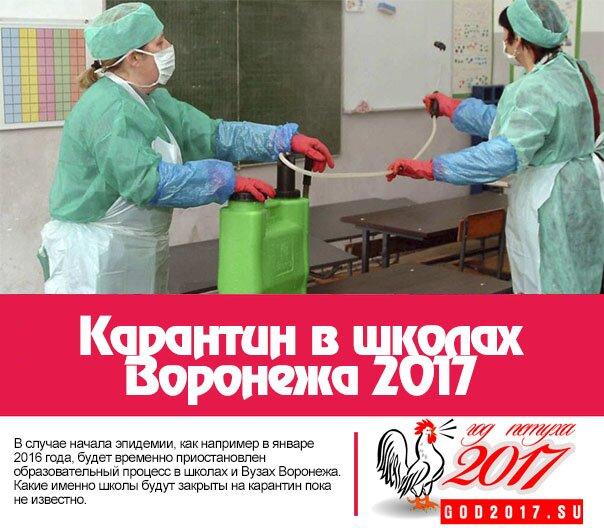 Карантин в школах Воронежа 2017