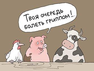 Грипп 2017 в Ростовской области