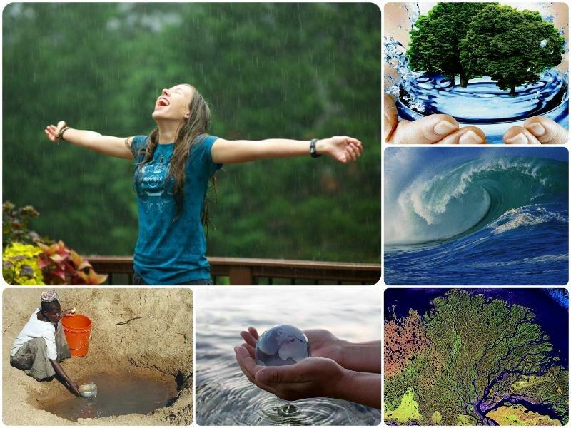 День водных ресурсов в 2017 году. Какого числа